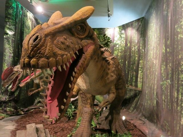 dinosaurs live torino