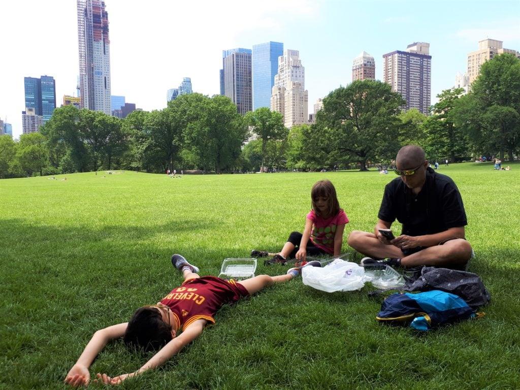 organizzare un viaggio a new york con i bambini