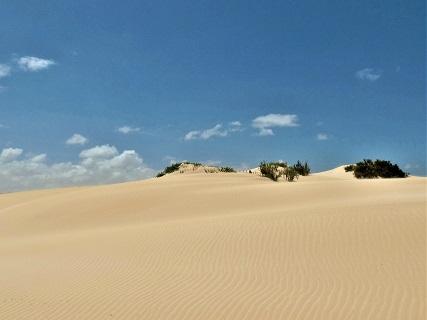 le spiagge nella zona nord di Fuerteventura