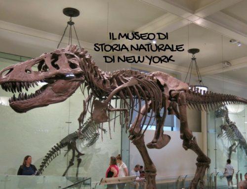 Il Museo di Storia Naturale di New York con i bambini: una giornata in uno dei musei più belli del mondo!