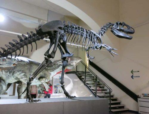 La mostra dei dinosauri a Bergamo