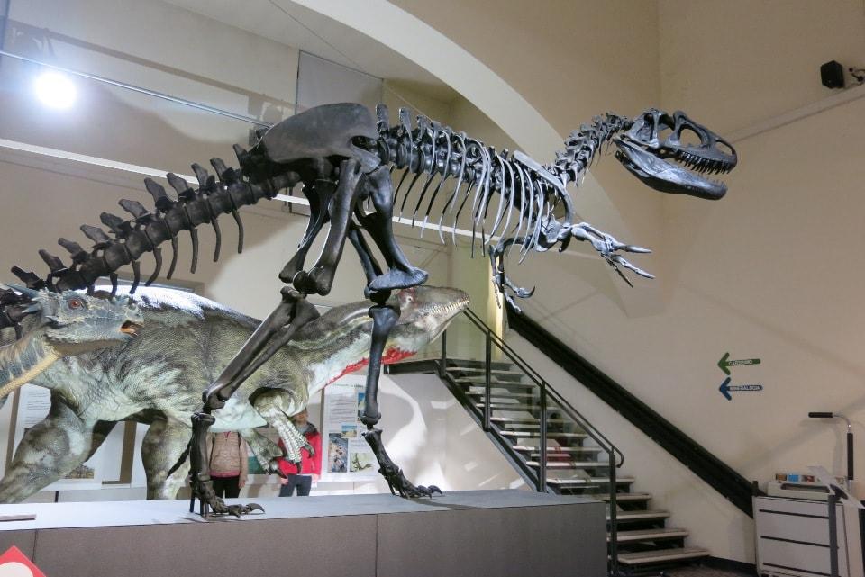 mostra dei dinosauri a bergamo