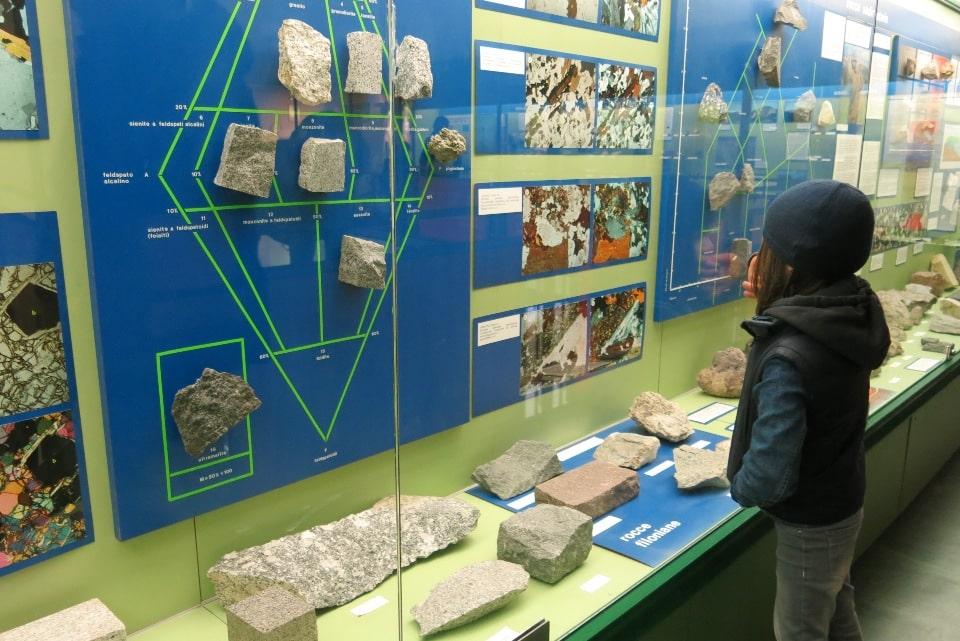 visita al museo civico di scienze naturali di bergamo
