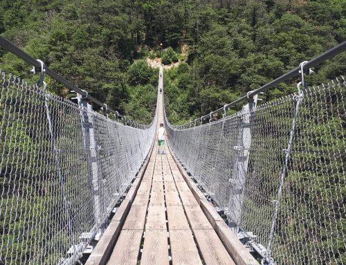 Il ponte tibetano di Bellinzona: Canton Ticino con i bambini