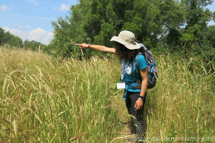 trekking facile vicino a bari