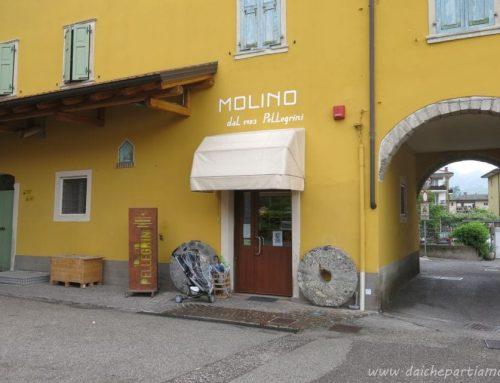 Visita didattica al Molino Pellegrini di Riva del Garda