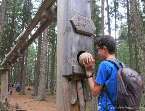 Tirolo austriaco con bambini: il Bosco delle Sfere, la più grande pista per biglie in legno del mondo